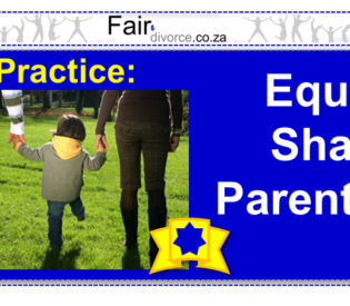 Best Practice: Equally Shared Parenting
